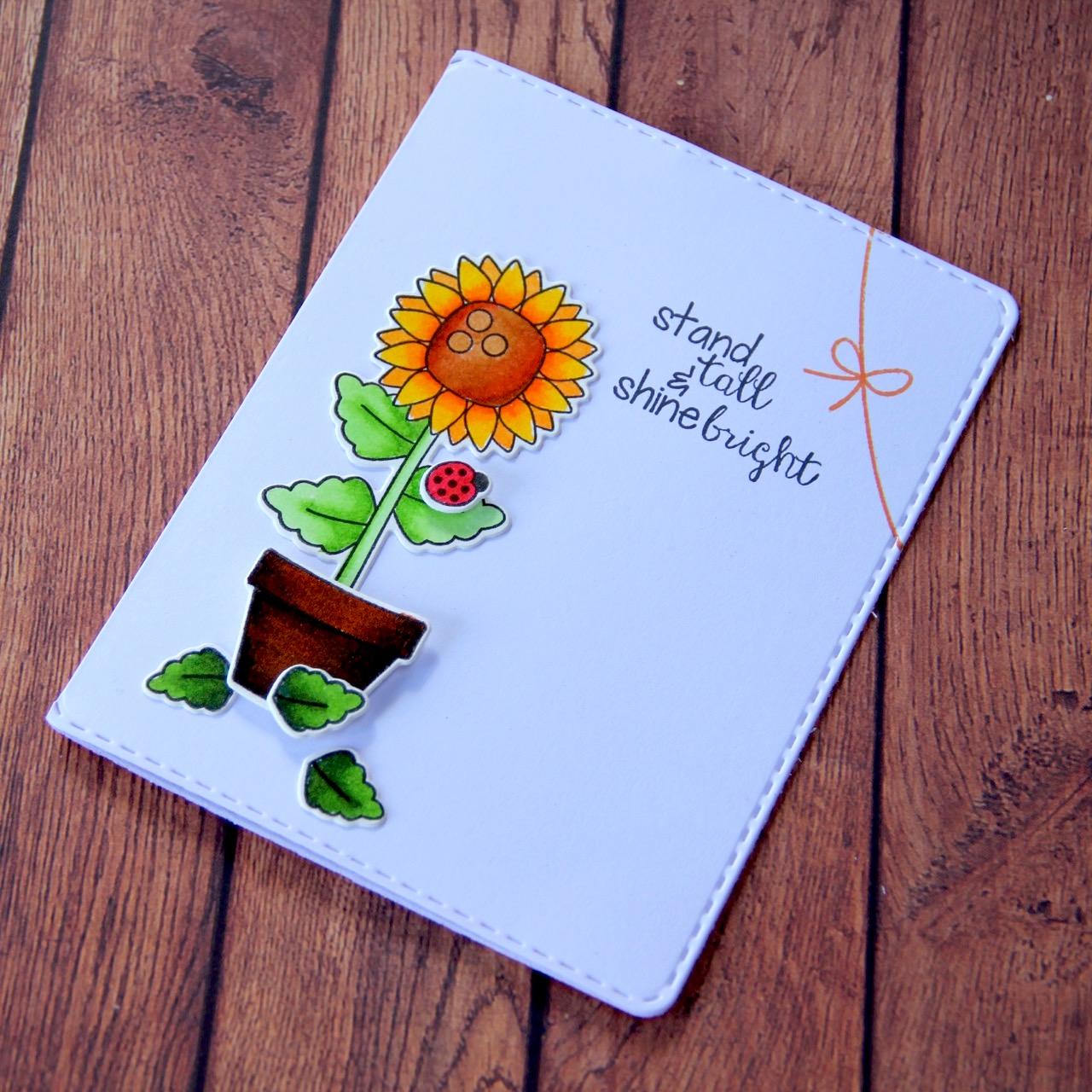 Mini Cards - 3
