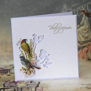 Ptacci - 3