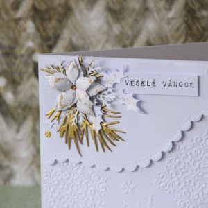 Romantika Vanoce - 10