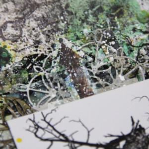 tree_LO - 6